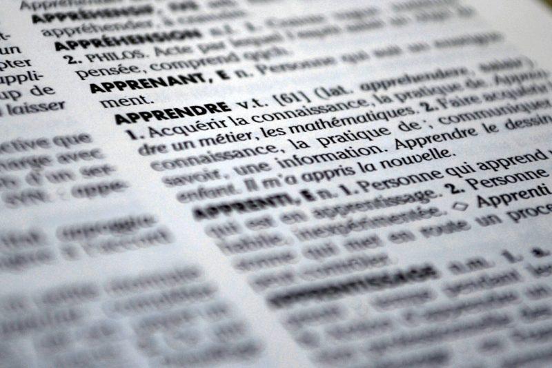 『盆栽飼育』とは?|優しい熱帯魚さん専門用語辞典