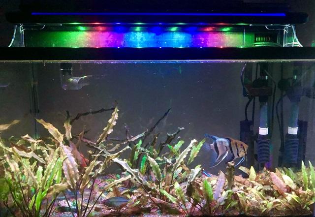 水槽 LEDライト